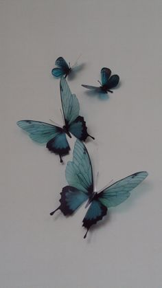 4 Luxury Amazing Teal Blue  Butterflies 3D  Butterfly Wall Art