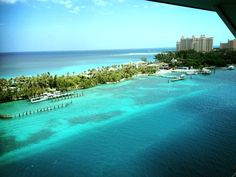 Lobe it here! Bahamas Atlantis