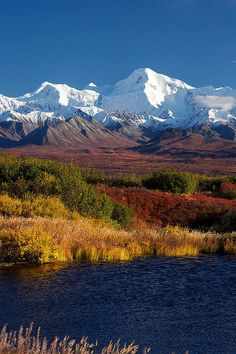 Rugged Terrain of The Denali National Park, Alaska