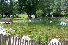 Kräuter-Erlebnis-Park Bad Heilbrunn Teich