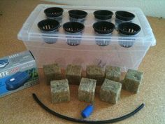 8 Plant DIY Hydroponic Bubbler Growing Bubbler