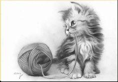 Cat drawing, cool art drawings, kitten drawing, beautiful drawings, a Cool Pencil Drawings, Amazing Drawings, Cute Animal Drawings, Beautiful Drawings, Pencil Art, Drawing Animals, Realistic Cat Drawing, Kitten Drawing, Realistic Drawings Of Animals