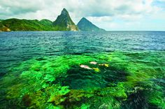 The Wanderlust List: Getting back to nature on the island of Saint Lucia