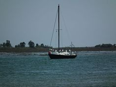 Boats_of_Santa_Luzia_May2013 001