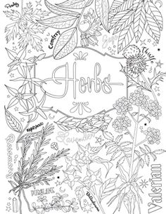 10 Best Coloring Images In 2017 Adult Coloring Pages Coloring