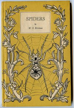 if I was to get a spider tattoo, this would be it...