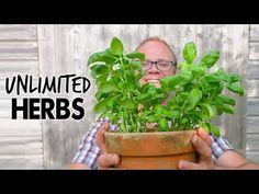 Grow Endless Herbs! 🌿🌿🌿🌿 - YouTube Farm Pictures, Garden Pictures, Old Farmers Almanac, Homestead Gardens, Garden Planner, Backyard Birds, Growing Herbs, Diy Garden Decor, Herbal Medicine