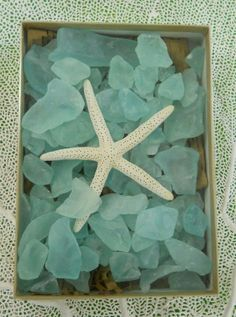 seaglass & starfish decor - takes me back to the beauty of the sea!