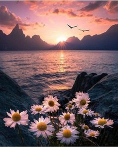 ~The most beautiful sunset is when you have it with your beloved one and most beautiful sunrise is quite the same~ Tumblr Wallpaper, Nature Wallpaper, Wallpaper Backgrounds, Wallpaper Lockscreen, Surfing Wallpaper, Hipster Wallpaper, Backgrounds Free, Photo Wallpaper, Phone Backgrounds
