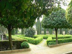 The hedges in Alcazar.jpg