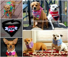 Crochet Dog Bandanas, Cowls, Ponchos FREE Patterns