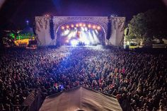The amazing wonderful Electric Picnic!!