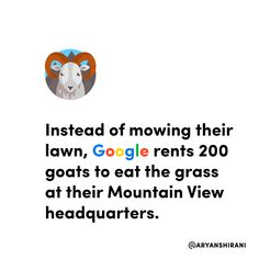 You read that right, instead of mowing their lawn, Google rents goats to eat the grass at their Mountain View headquarters.  A herder will bring 200 goats which are herded by a border collie named Jen. Border Collie Names, Mountain View, Goats, Lawn, Reading, Google, Reading Books, Goat, Grass