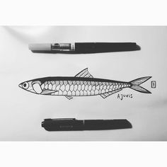 Tattoo idea for Mrs Perch. Yes I also forgot the n and the s. #betterwithpictures #mommysaysimspecial #ansjovis #anchovy #anchovies #hamsi #sketchbook by peterperch