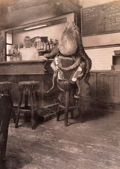 yep, it's an Octopus playing an accordian