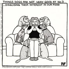Another thing dogs are not very good at- Off The Leash by Rupert Fawcett