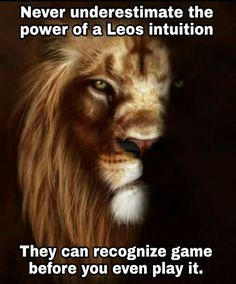 🤷( you got the good eye covered Simple! I'm not your enemy but you insist! Leo Virgo Cusp, Leo Horoscope, Astrology Leo, Virgo Compatibility, Leo Lover, Leo Zodiac Facts, Zodiac Quotes, Lion Quotes, Quotes Quotes