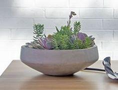 Detroit Planter Grey Plant Needs, Air Plants, Detroit, Decorative Bowls, Succulents, Planters, Indoor, Grey, Interior