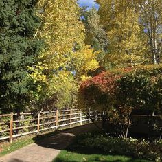 Planning your next trip: How about a gorgeous fall weekened getaway in Sun Valley, Idaho?!