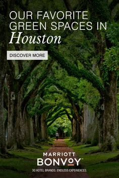 Texas Travel, Travel Usa, Beautiful Places To Travel, Cool Places To Visit, Discovery Green, Hermann Park, Adventurous Things To Do, Us Destinations, Break Free