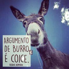 """@instabynina's photo: """"Fuja dos burros... Bom dia, com humor! #burrice #gentemala #humor #citações #frases #desaforo #instabynina"""""""