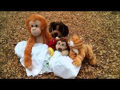 Summer 2014: Fizz Boom READ! The 47 stuffed animals had a scientific adventure!