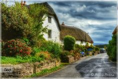 Holiday Cottages at the Weir ... These cottages are used as holiday lets mostly. They back onto a stoney beach and are situated at the roadside of Porlock Weir a lovely little harbour which is very popular with tourists walkers and sailors.