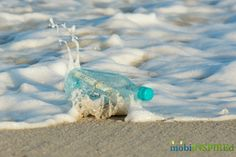 Message in a bottle at the beach. Photo by: mobiiNSPIREd.