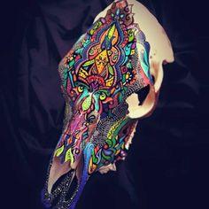 painted Cow skull by Sarah Rasul