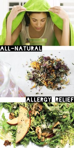 Step away from the meds: we've found the best all-natural solutions for your standard allergy needs! Less sneezing, more Sriracha.