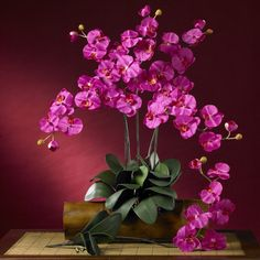 Beautiful Artificial Phalaenopsis Orchids offered in many colors. Visit: http://www.qualitysilkplants.com/silk-phalaenopsis-orchids.html