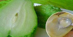 www.tusaludesvida.com maneras-en-las-que-este-delicioso-y-nutritivo-vegetal-te-puede-ayudar-a-adelgazar