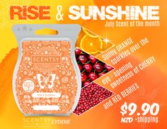 Red Berries, Scentsy, Wax, Sunshine, Fragrance, Disney, How To Make, Perfume, Red Currants