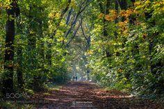 Enjoying Autumn by williammevissen