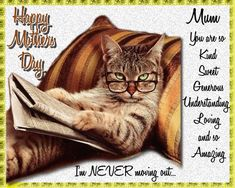 A fun and quirky card for an amazing mum. Free online I'm Never Moving Out ecards on Mother's Day Mother Day Wishes, Happy Mothers Day, Big Hugs For You, Warm Hug, Love Hug, Mum Birthday, Flower Quotes, Moving Out, Feeling Special