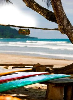 Santa Teresa Beach, Surfing. COSTA RICA.