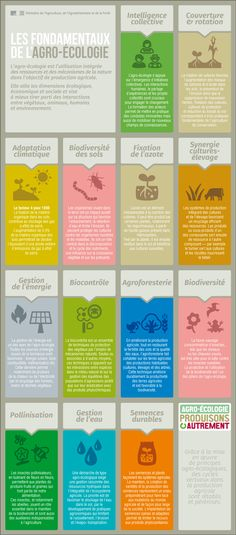 Infographie - Les fondamentaux de l'agro-écologie   Minagri