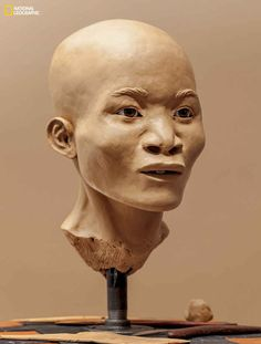 "You're looking at the face of one of the first Americans. Meet ""Naia."" She is around 13,000 years old."