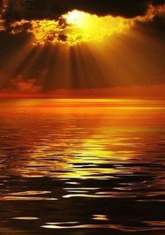 Golden sunset #photographyserendipity