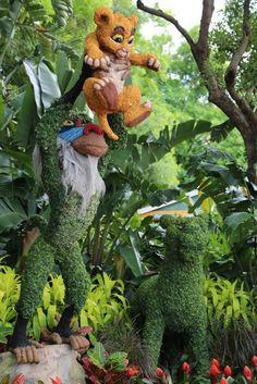 Lion King Epcot Flower and Garden Show Walt Disney World