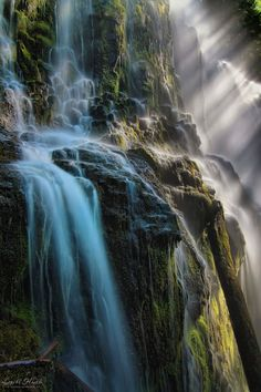 Proxy Falls, Three Sister's Wilderness, Oregon, USA. Photo by Babyc8kes