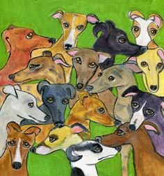 Greyhounds come in all colors. Their ears can be so many different shapes. This is a group of greyhounds on a green background. This card can be