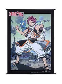 Fairy Tail Natsu And Happy Wall Scroll