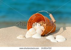 Bucket with white shells on the sunny beach - stock photo