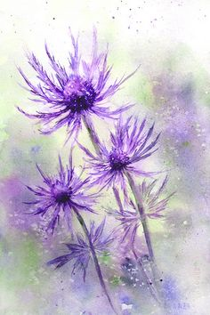 View From the Oak: Sea Holly Watercolor Illustration, Watercolour Painting, Watercolor Flowers, Watercolors, Sea Holly, Watercolor Pictures, Spring Painting, Encaustic Art, Purple Flowers