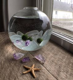 Enjoy a piece of nature in your home or office with this cute little marimo ball aquarium. Along with your marimo you will receive genuine sea glass and amethyst to admire. The glass orb is about 3 x 3 and the moss balls are all about 1/4 in size.Enjoy