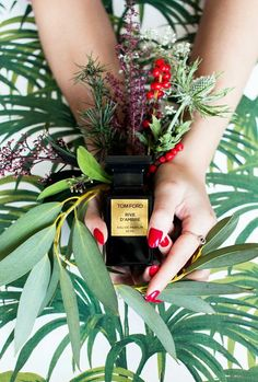 Beauty Still Life (Tom Ford), by Kit Lee via Style Slicker. (Ingredients Flatlay Inspiration)