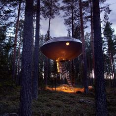 Seven treehouses you can sleep inside at Sweden's Treehotel #5 The UFO - Inrednin Gsruppen
