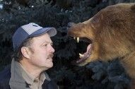 Research Suggests Spray is Safer than Firearms in Preventing Bear Attacks