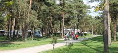NORG DRENTHE Boscamping Langeloërduinen People Laughing, Outdoor Life, Campers, Caravan, Boats, Dolores Park, Spaces, Travel, Rv